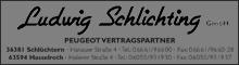 Ludwig Schlichting